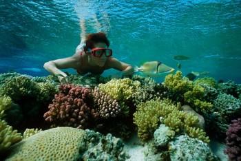 Giftun Island Snorkeling Trip